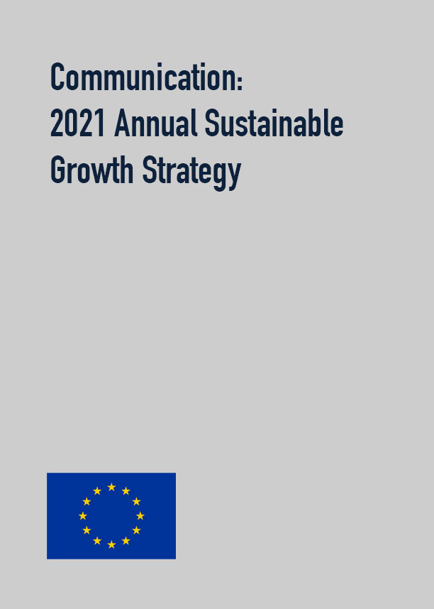 Communication: 2021 Annual Sustainable Growth Strategy
